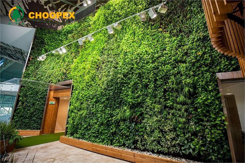 دیوار سبز طبیعی، ساخت و نگهداری آن