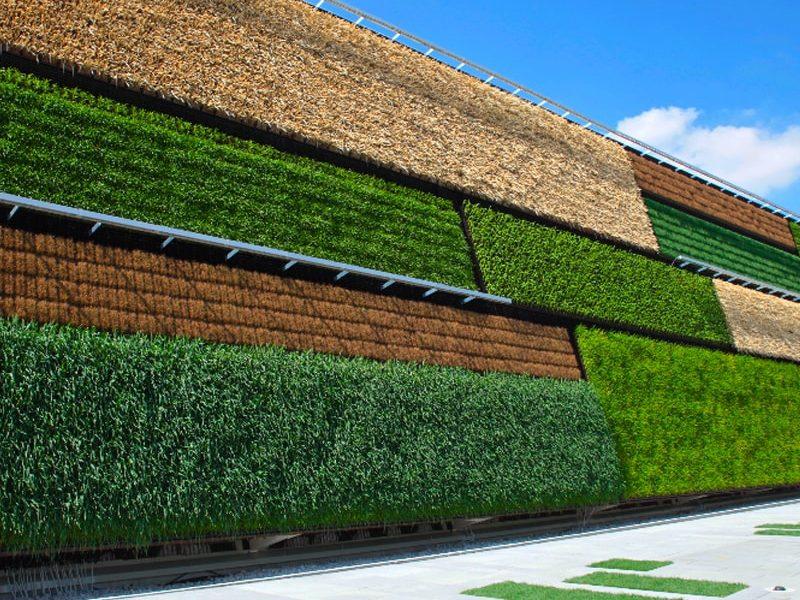 فواید نمای سبز و دیوار زنده