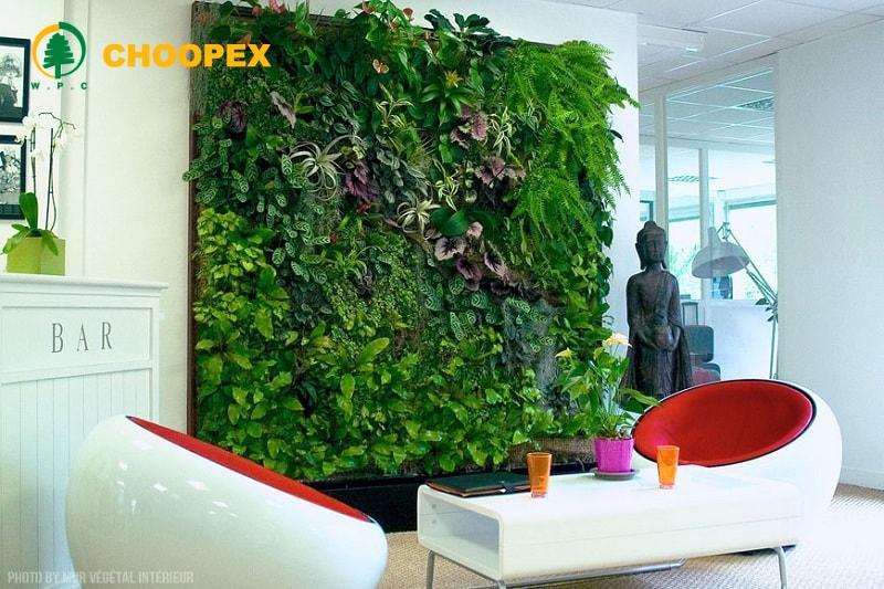 دیوار سبز خانگی و نحوه اجرای آن