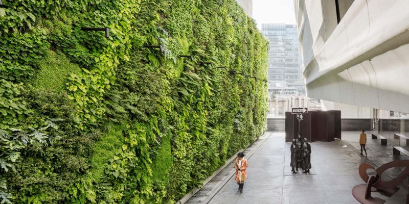گلدان دیوار سبز