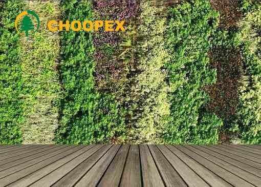 فواید دیوار سبز خانگی