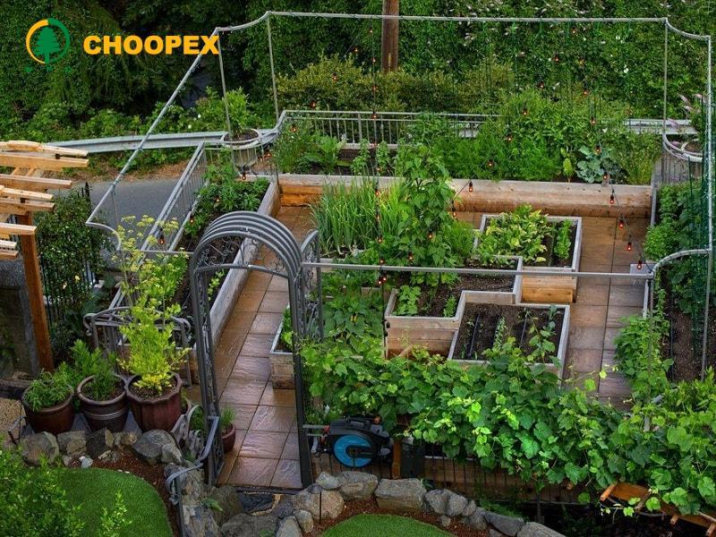 طراحی بام سبز و بایدهای اجرای آن!
