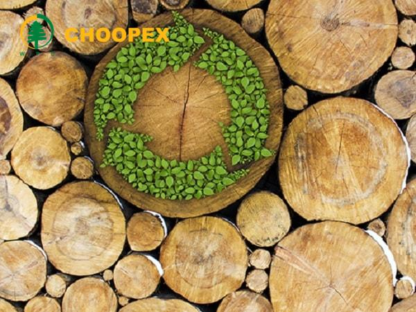 بازیافت چوب