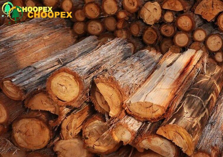 انواع چوب و کاربردهای آن در صنعت ساخت و ساز