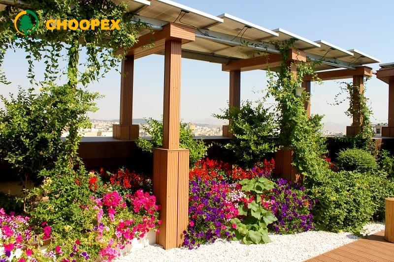 چگونه پشت بام را گلخانه کنیم
