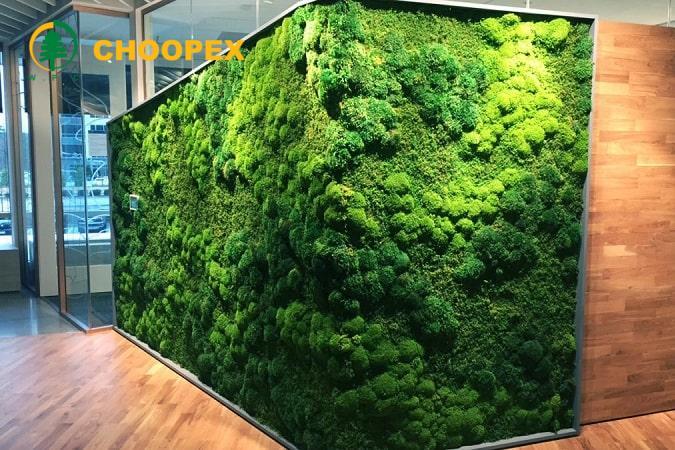 انواع دیوار سبز چیست