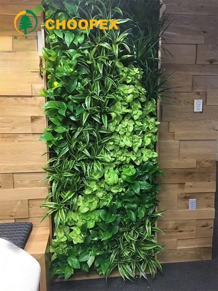 قیمت دیوار سبز